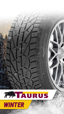 Taurus Winter 195/60R15